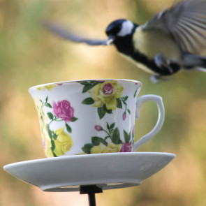 Vogelvoeder - Thee/koffie kopje - Rode/roze rozen